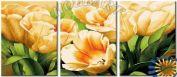 "Раскраска по номерам ""Тюльпаны для тебя"""